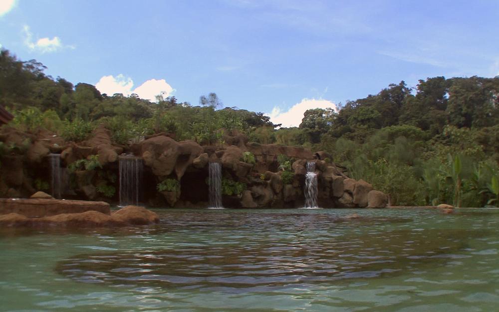 waterfall-gardens-067.jpg