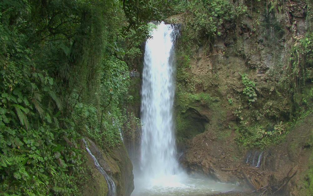 waterfall-gardens-071.jpg