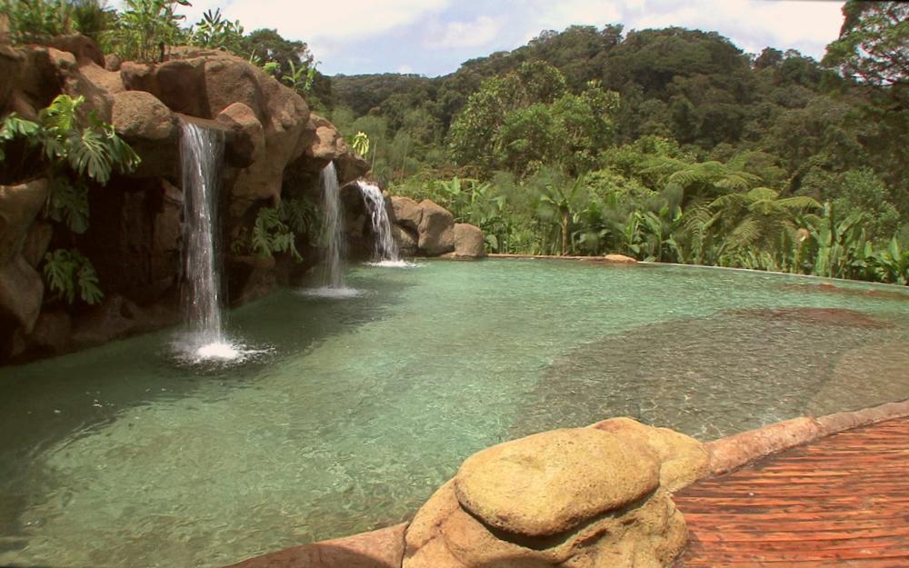 waterfall-gardens-094.jpg