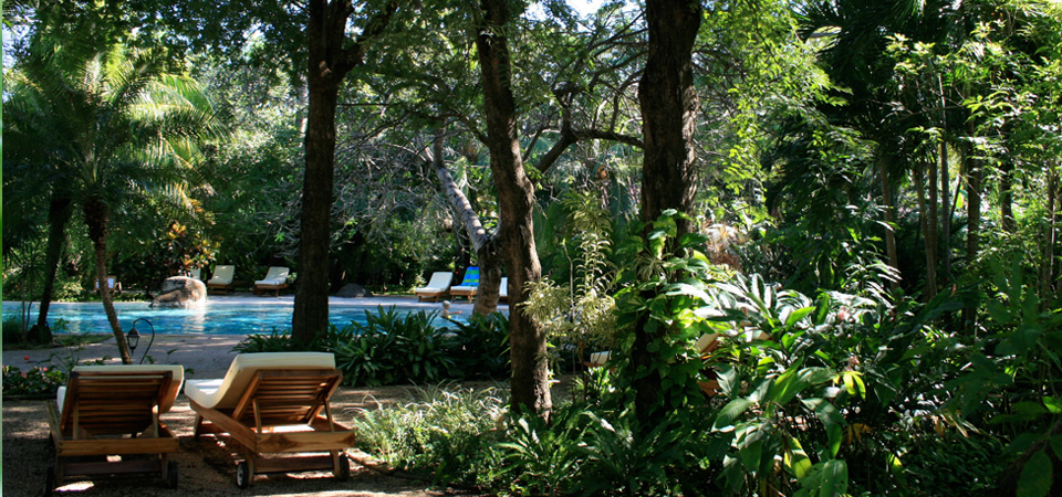 Garden and Pool.jpg