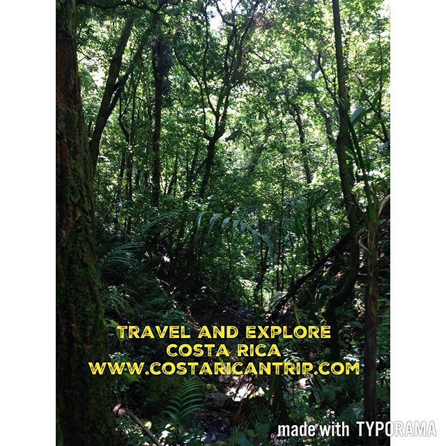 Rainforest and more! Visit Costa Rica 🇨🇷 www.costaricantrip.com #visitcostarica #beautiful #costarica #vacation #nature #rainforest #amazing #adventure