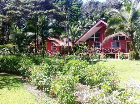 caribbeanparadisehotel.jpg