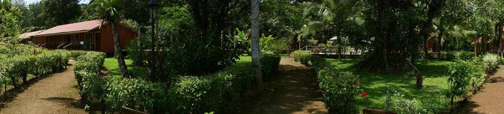caribbeanparadisehotel1.jpg