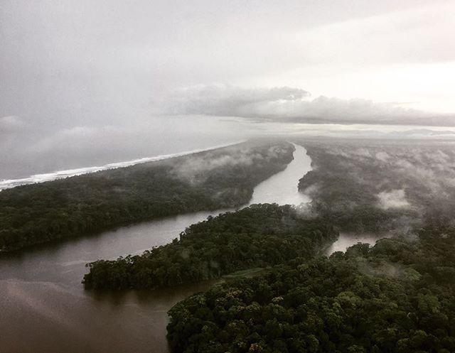 Canales de Tortuguero. Visit Costa Rica 🇨🇷 www.costaricantrip.com #vacation #amazing #nature #traveltocostarica #tortuguero #visitcostarica