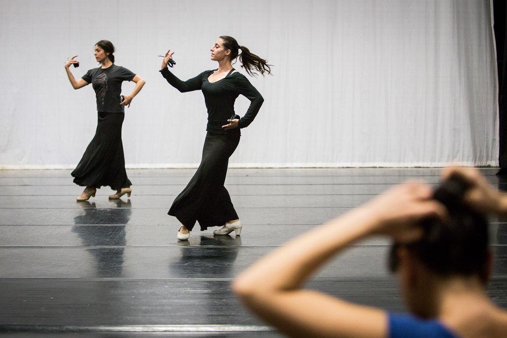flamenco-5043