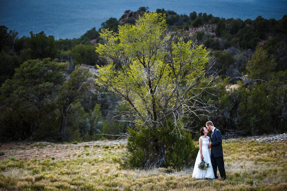wedding-albuquerque-tijeras-ywca-pinon-canyon-center-0554.jpg