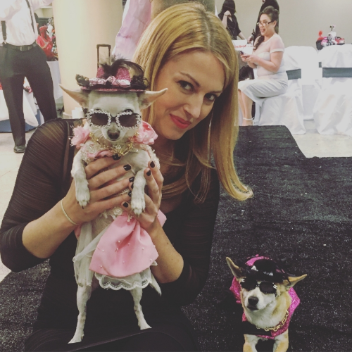 "Sarah hosted designer Kevin Ugarte's fashion gala for ""The Dog Show,"" one of New York City's primary non-profitorganizations for animals. Watch the video below to see some of the cute and crazy creations displayed on the runway!"