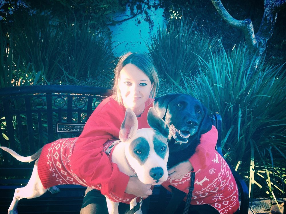Angie - Hi! I'm Angie, the owner of For Sniffs and Giggles. Dogs have been a passion of mine my entire life. Being able to make my passion into a career has been a huge blessing. I am now able to provide dogs other than my own with adventure and fun; the happy panting of a dog after a hike in our beautiful area is everything to me. First and foremost I am here to provide high quality care for your animals as if they were my own. My specialty is exercising and small, controlled socialization for dogs. Whether it's via a long hike or an hour long romp with doggie friends, the goal is to create an environment for which your dog thrives. I have a dog training certificate via Animal Behavior College as well as Unleashed by Petco and continue my education via in person and online classes in order to excel and learn about animal behavior, specifically focusing on dogs and cats. I have created this business with the animal's livelihood in mind and employ those with like minded beliefs and together we make up the team of For Sniffs and Giggles.