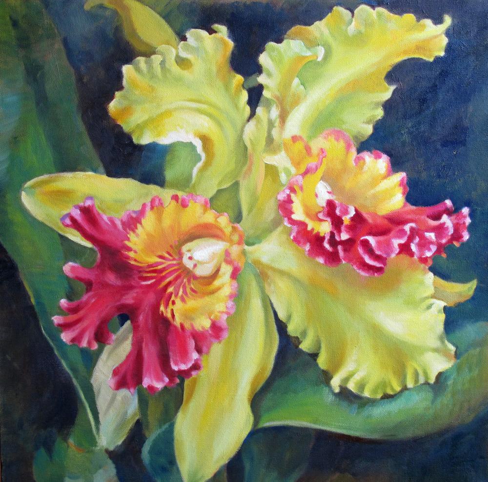 Orchid l