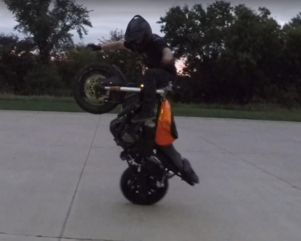 RJ ShrimptoonHaunting a wheelie!