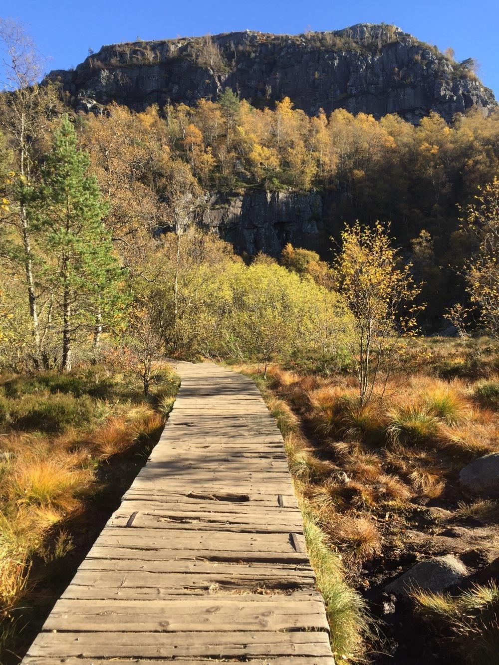 Preikestolen - Wooden Walkway.jpg
