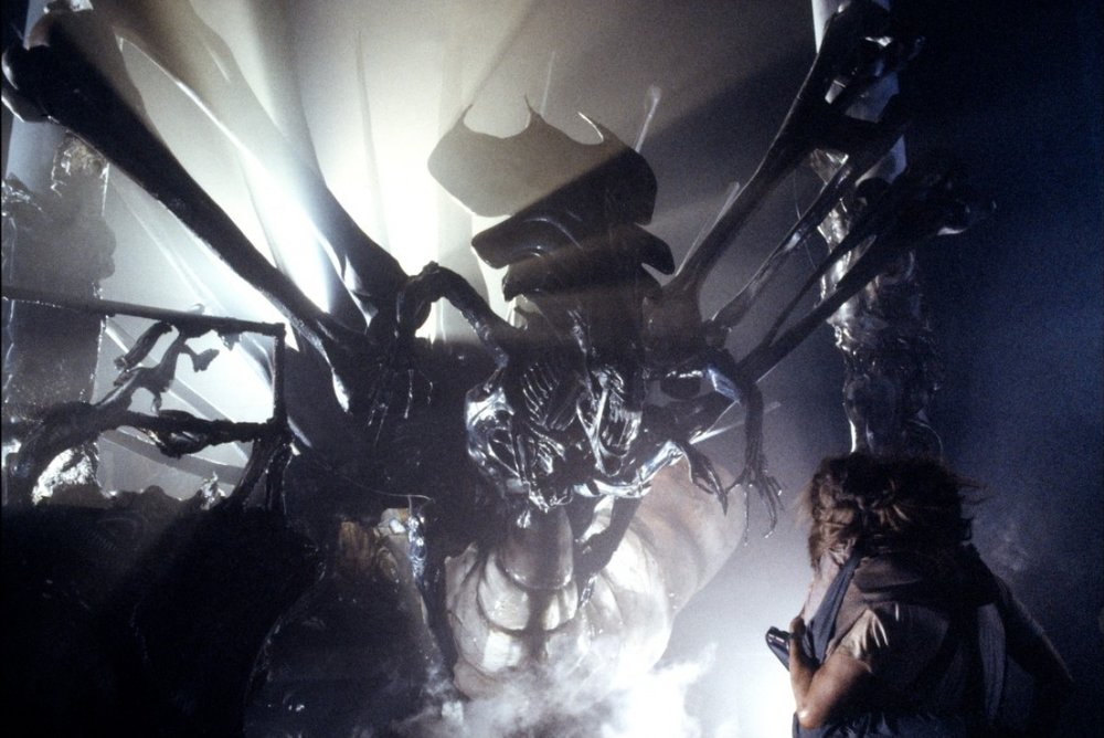 To up the ante in the series, and introduce a new key element to Ripley's relationship with the aliens, James Cameron created a queen for the alien hive. The 14'-long model of the queen was built from Cameron's own designs.