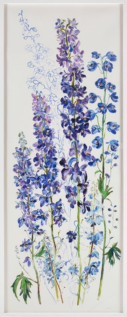 Delphiniums-Truth