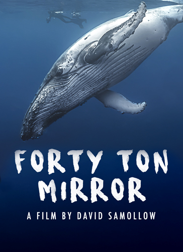 Forty Ton Mirror