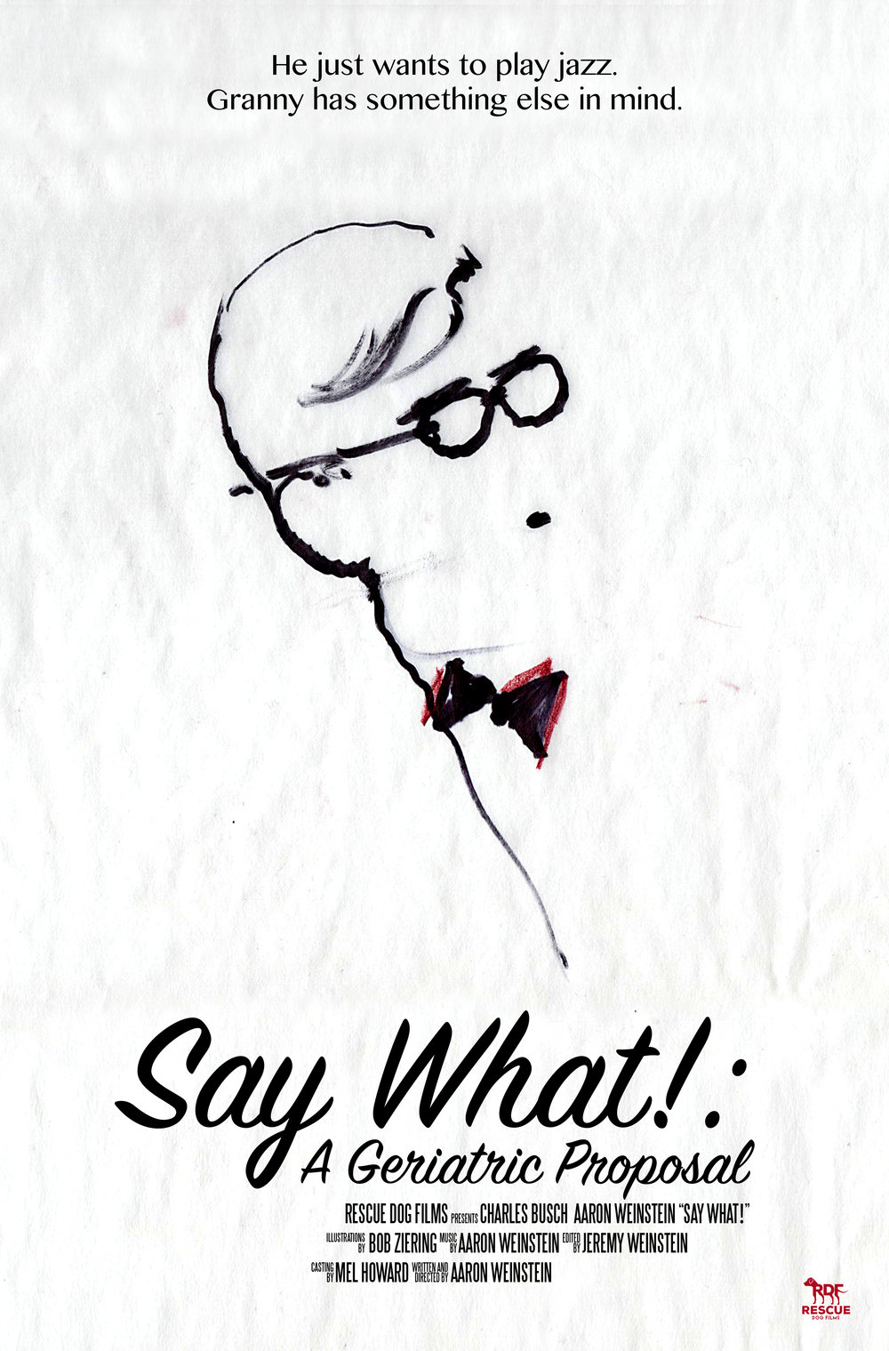 Say What!: A Geriatric Proposal