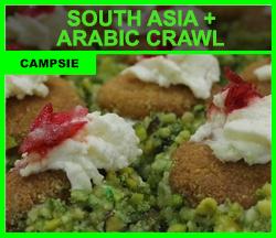South Asia + Arabic Crawl