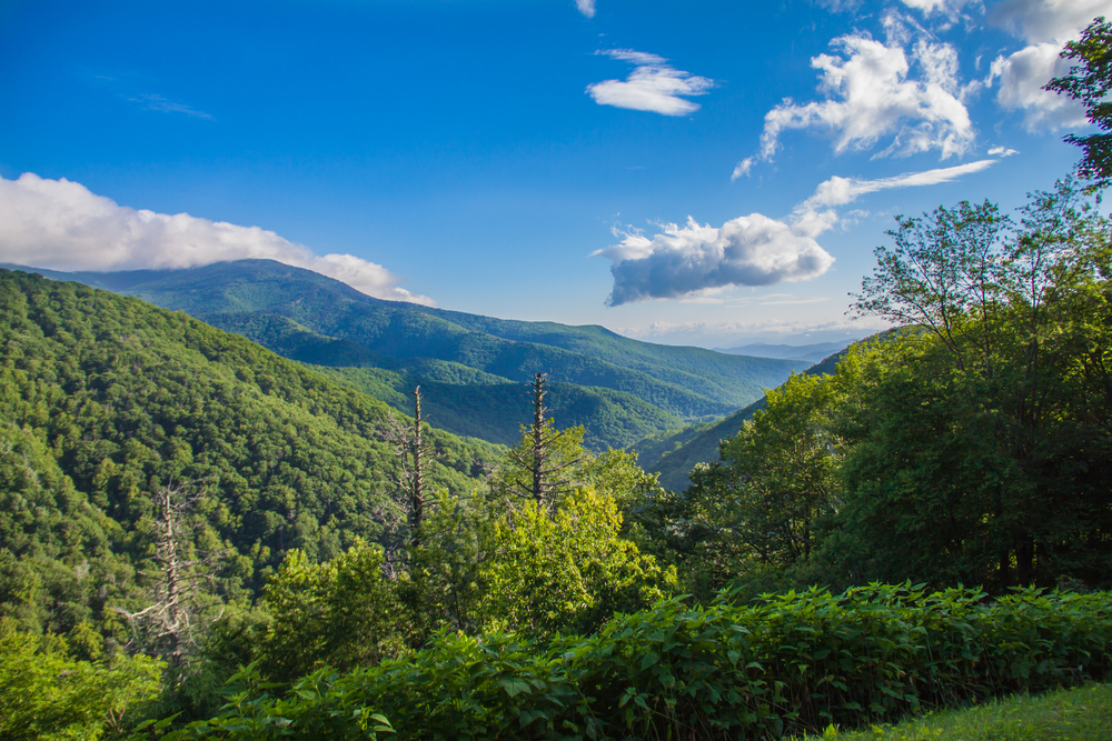 smokymountains2015.jpg