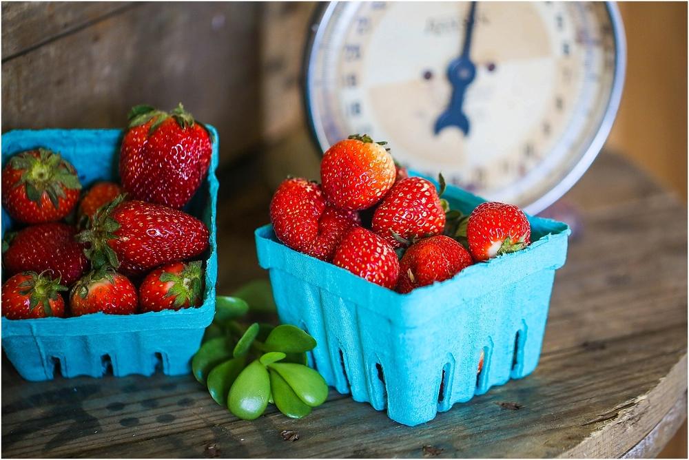 Central_VA_Barn_at_Edgewood_Farm_Farm_to_Table_Styled_Shoot_0089.jpg