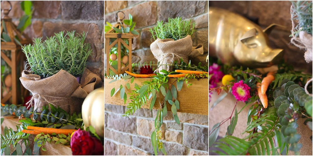 Central_VA_Barn_at_Edgewood_Farm_Farm_to_Table_Styled_Shoot_0017.jpg