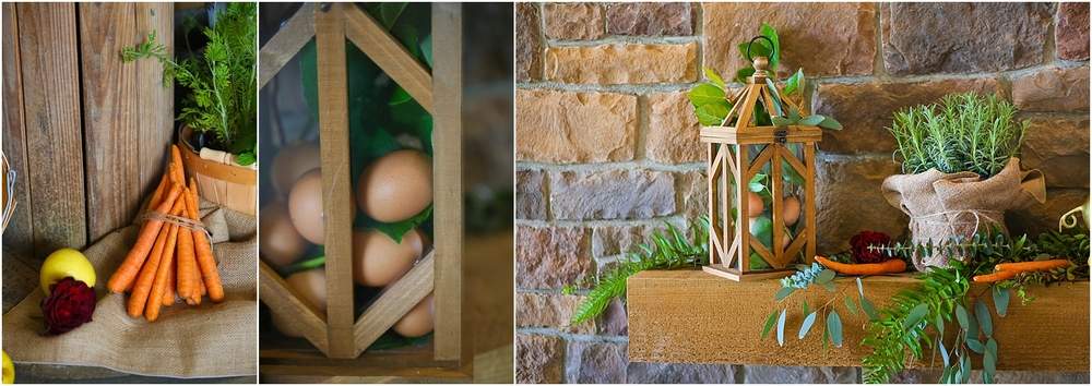 Central_VA_Barn_at_Edgewood_Farm_Farm_to_Table_Styled_Shoot_0087.jpg