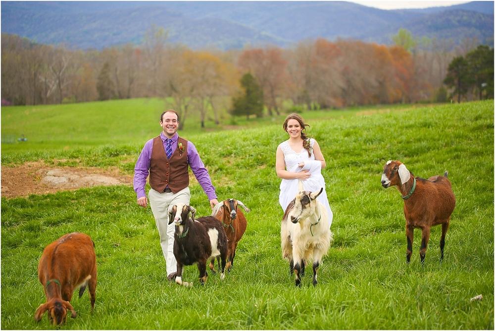 Central_VA_Barn_at_Edgewood_Farm_Farm_to_Table_Styled_Shoot_0047.jpg