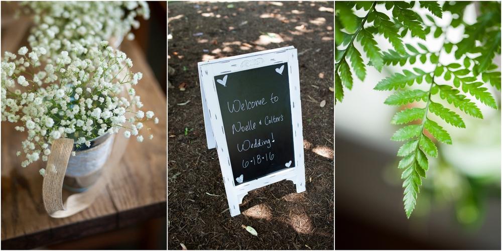 Rodes Farm Charlottesville VA Wedding-36-2.jpg