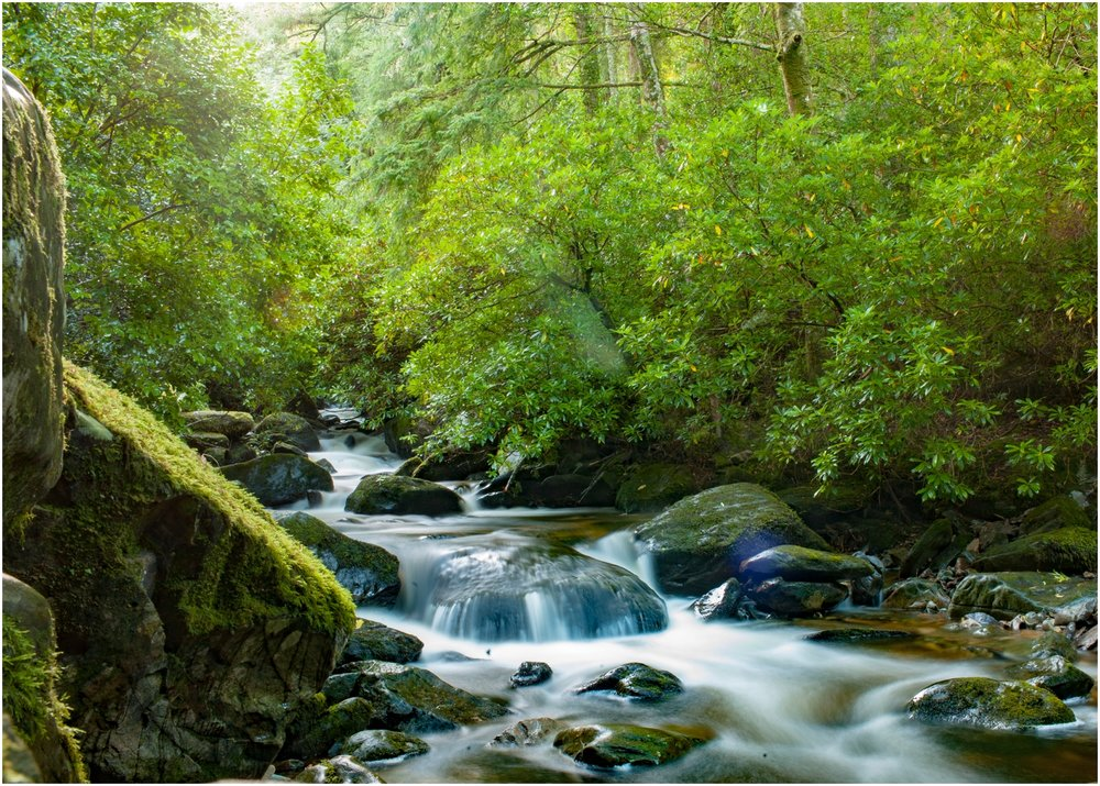 Ireland-Road-Trip-2016-8958.jpg