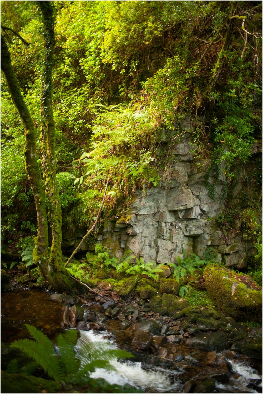 Ireland-Road-Trip-2016-8972.jpg
