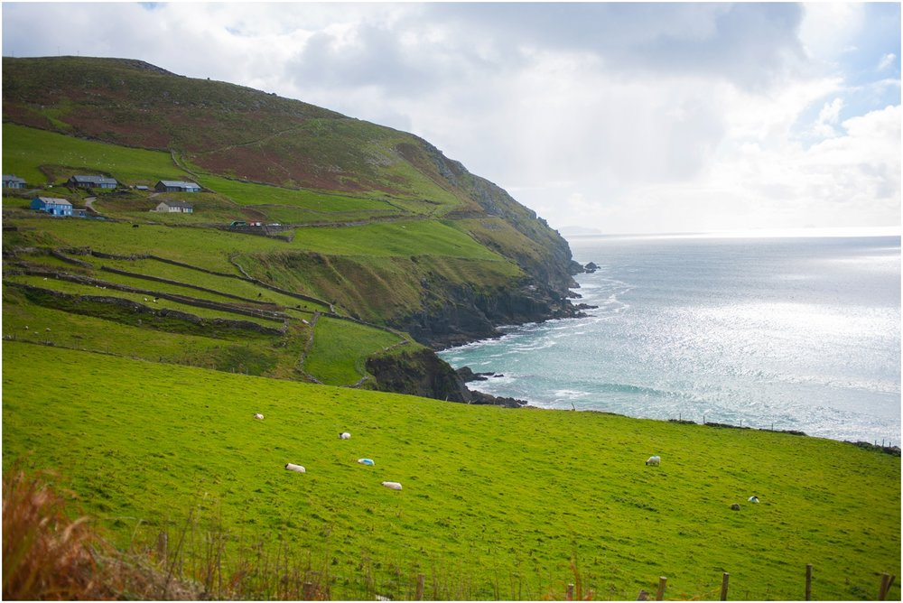 Ireland-Road-Trip-2016-9114.jpg