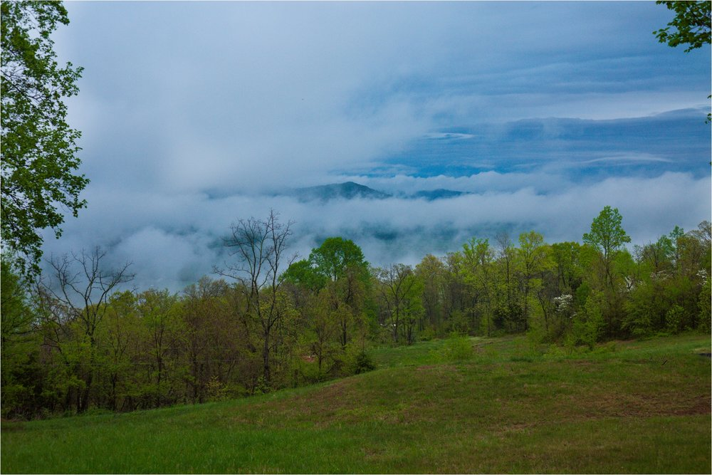 Lydia-Mountain-Spring-Virginia-Wedding-1217.jpg