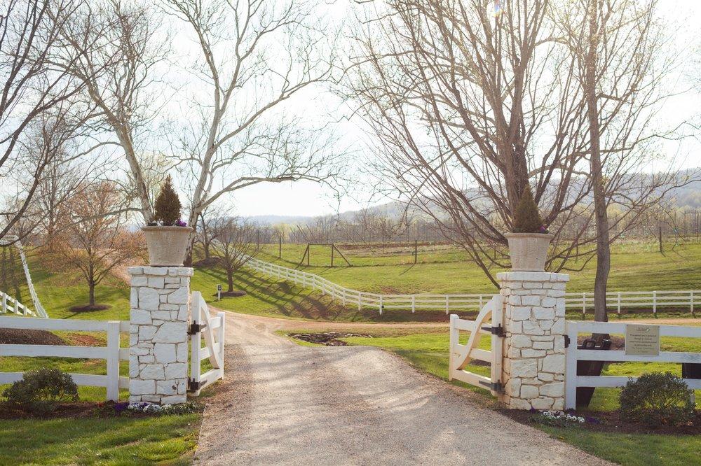 Castle-Hill-Virginia-Wedding-2019-4864.jpg
