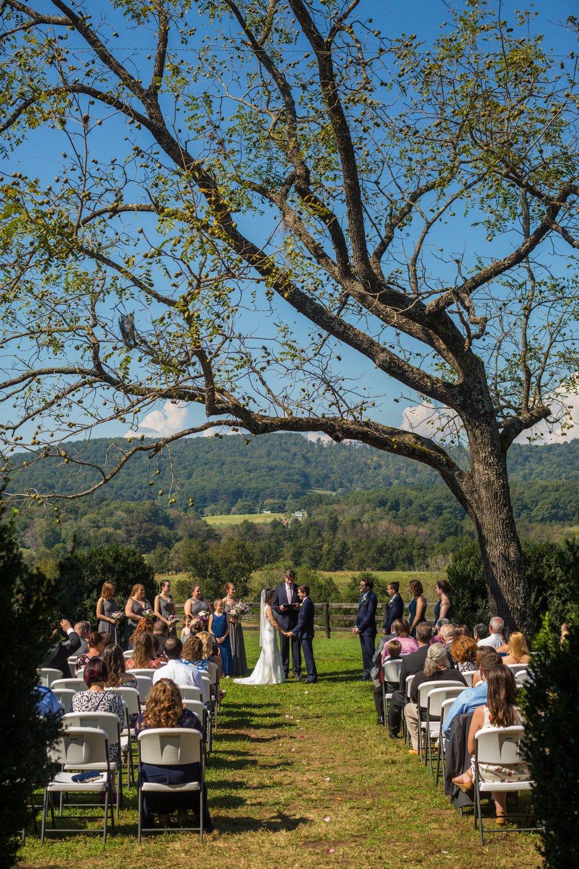 Wolftrap-Farm-Wedding-0623.jpg