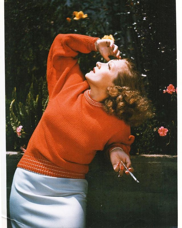 Is it summer yet? #orangeisahappycolour #wherehavealltheflowersgone #dietrich