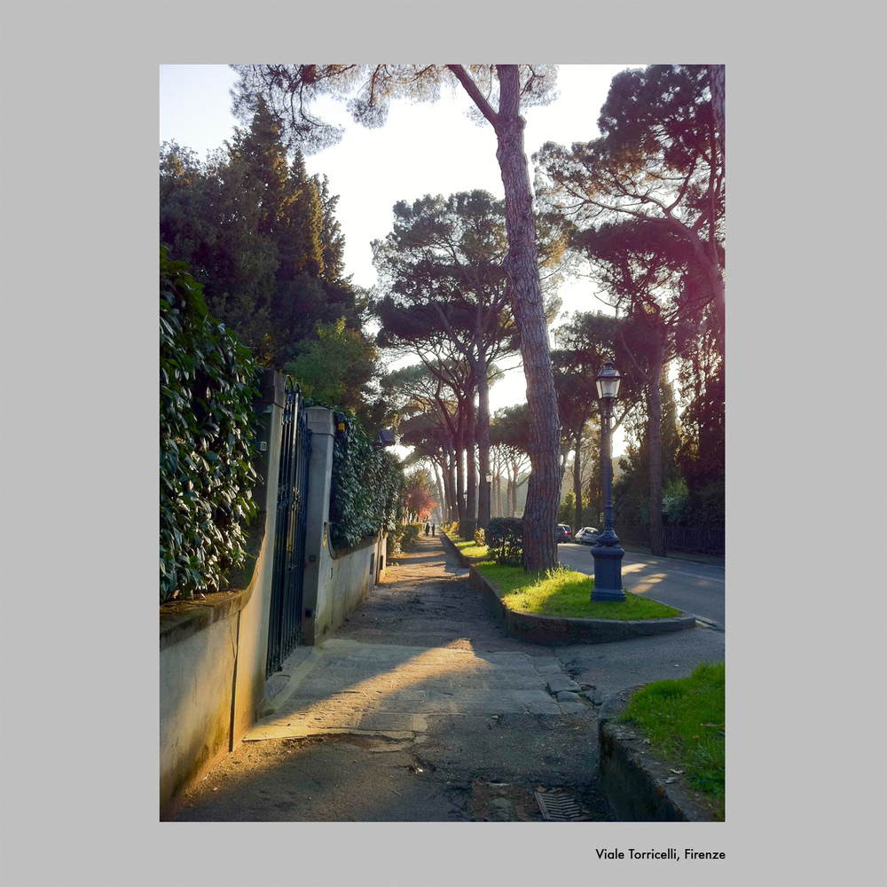 viale Torricelli, Firenze.jpg