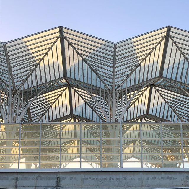 A mais fotogénica das estações de comboio portuguesas... . . . #garedooriente #garedoorientestation #railway #lisbon #portugal #santiagocalatrava #santiagocalatravaarchitecture #lisboa #architecture #portuguesearchitecture