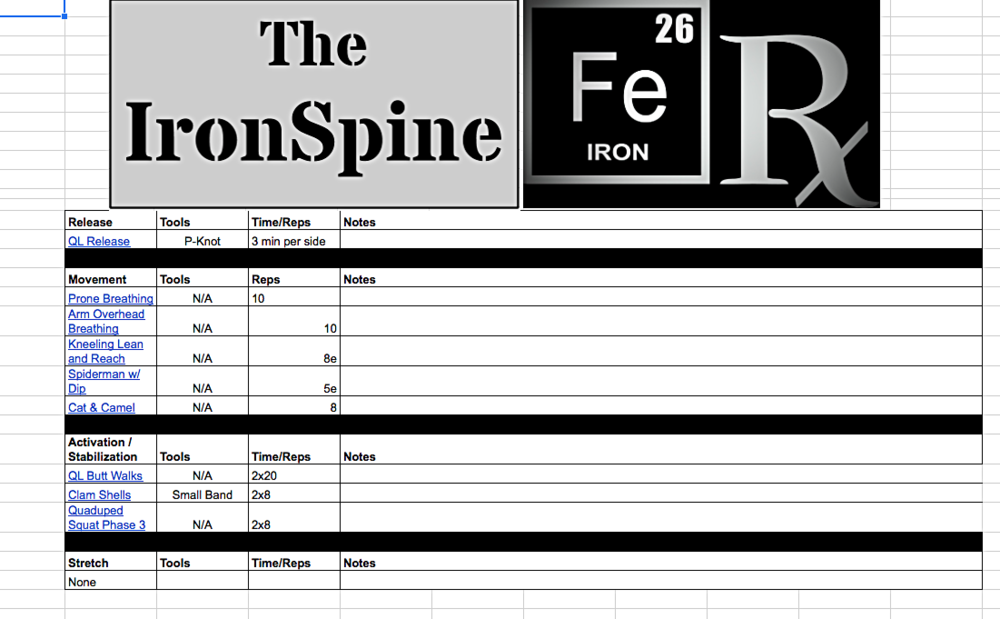 An example of one day of The IronSpine