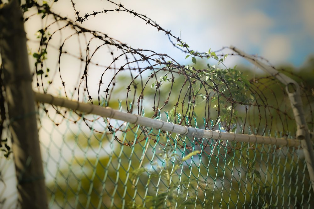 barbed-wire-600471_1920.jpg