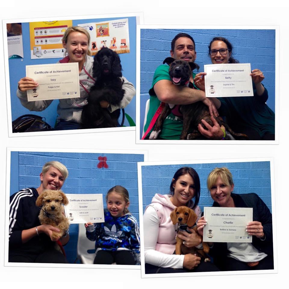 puppy school 03-11-15.jpg