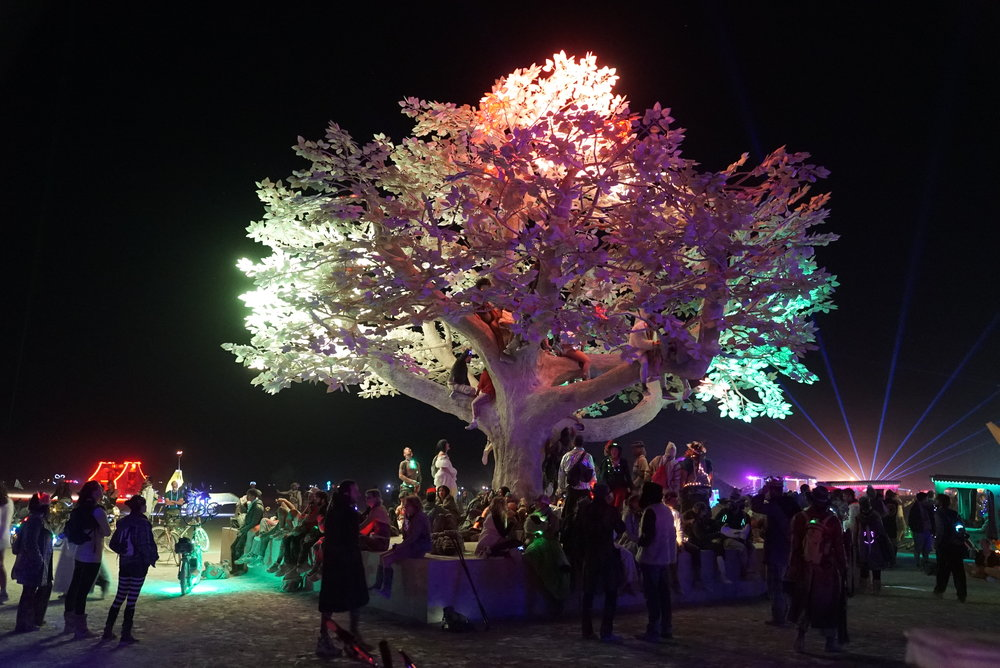 Tree-of-Tenere_BurningMan2017_Studio Drift_2.JPG