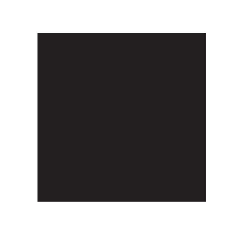 Endurance_Logo Block.png