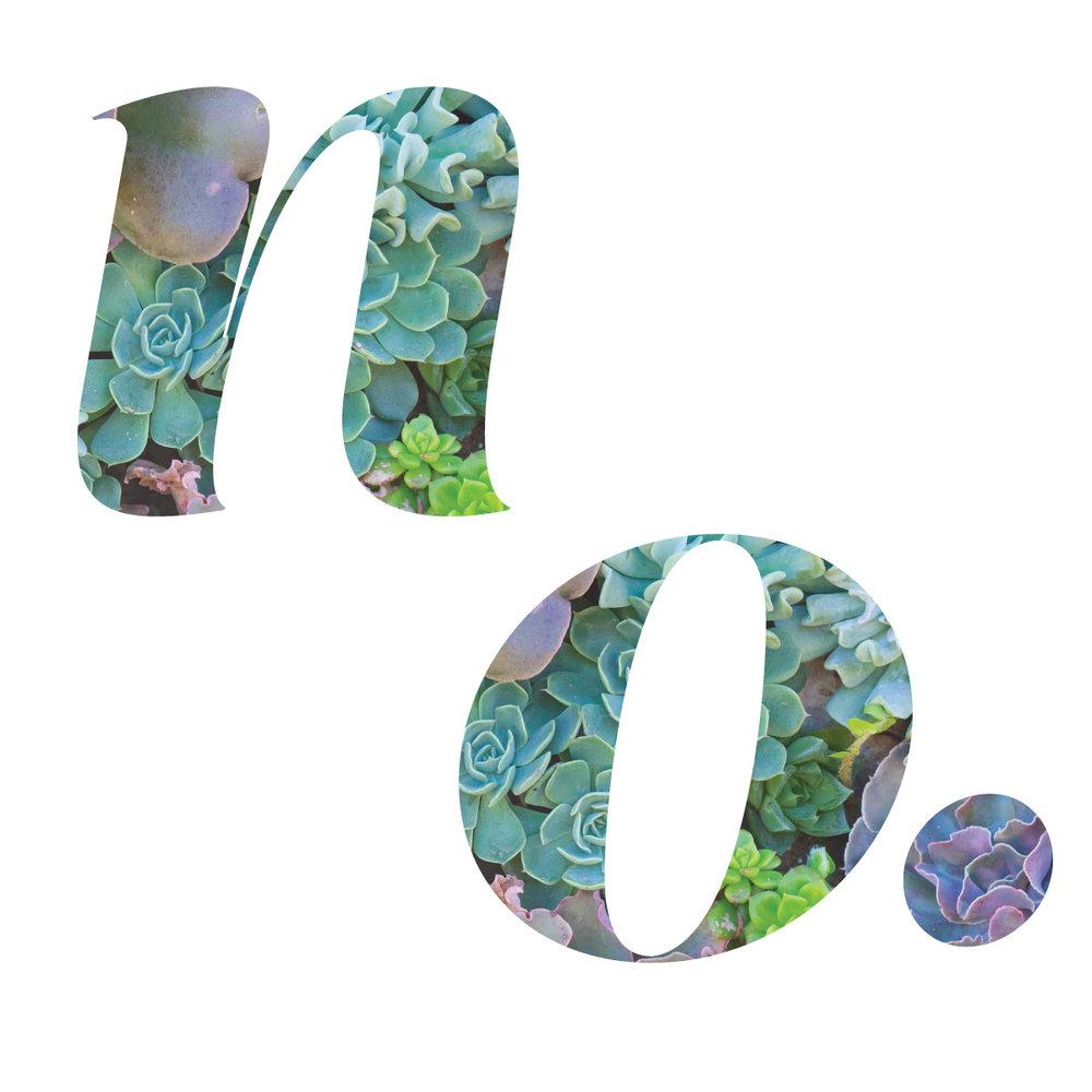 003-NO.jpg