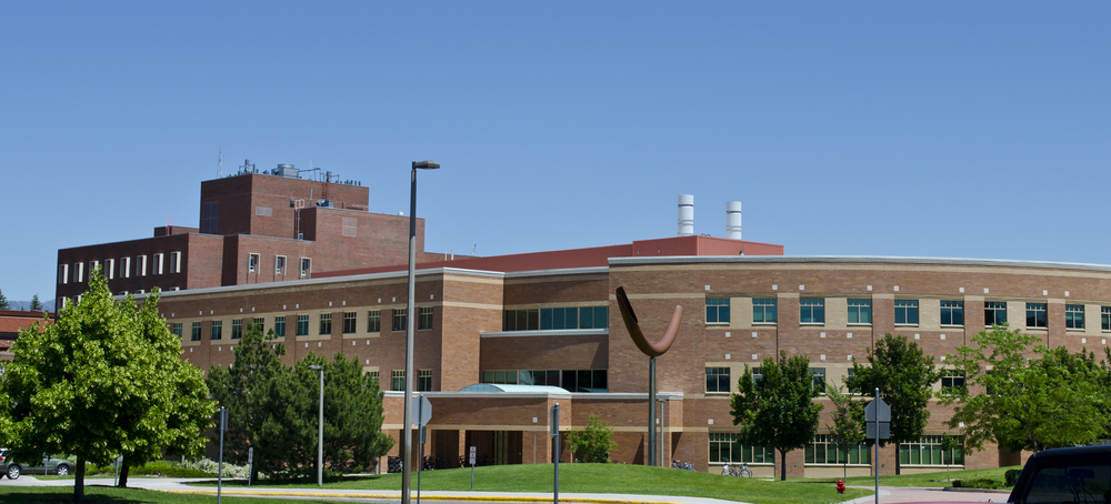 Looking_NE_Engineering_and_Physical_Sciences_Building_-_Montana_State_University_-_2013-07-09.jpg