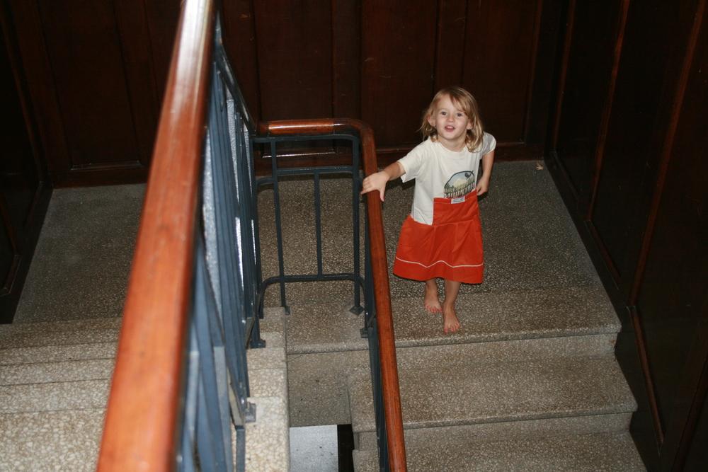 Zia orange on stairs.JPG