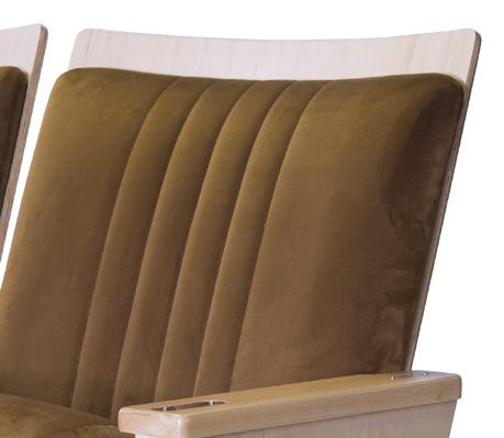 Standard Back Foam