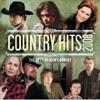 CountryHits2008.jpg