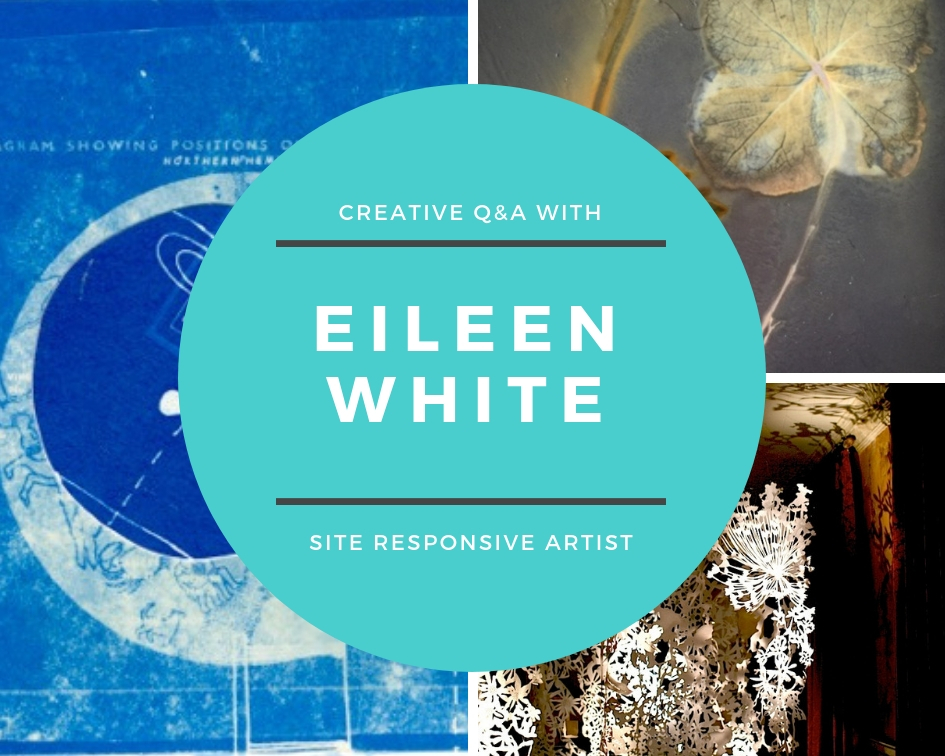 Eileen White | Site Responsive Artist, Hampshire, UK