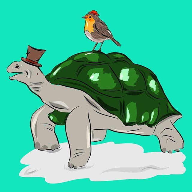 Turtle turtle #adobemobile #illustration #turtle #adobedraw #dailygraphic #tinyhat  #ipadpro