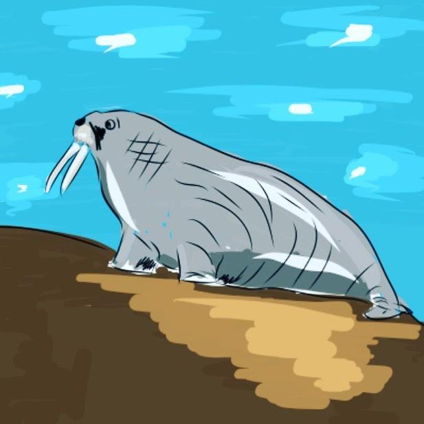 Who wants a walrus ride?  #adobemobile #adobedraw #dailydraw #ipadpro #iamatabeerfest #graphicdesign #hashbrown