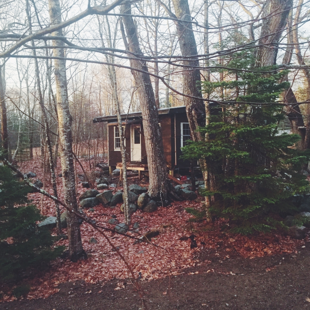 Fall - Our Tar-paper cabin in the woods is coming along but not as quick as the annual leaf fall.