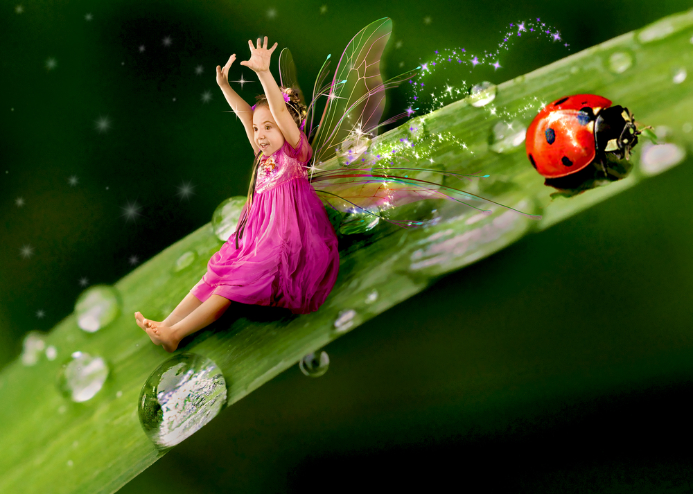 girl fairy with ladybug fantasy composite photo